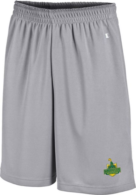 Clarkson-University-Golden-Knights-Mesh-Shorts-374
